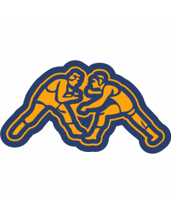 NWRST - New Wrestlers Sleeve Patch