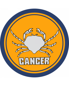 Cancer Sleeve Patch